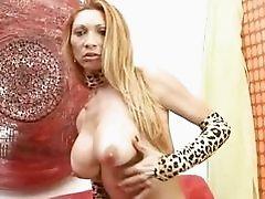 Raquel Dorado Sexy Tranny Massaging Her Wanker