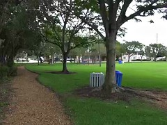 Mature blonde slut sucks a dick in the park